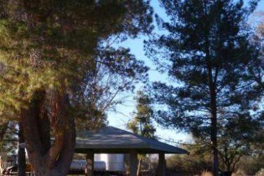 Los Arboles Community 1 (image)