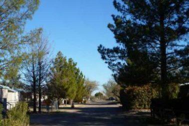 Los Arboles Community 4 (image)
