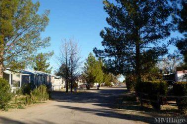 Los Arboles Community 6 (image)